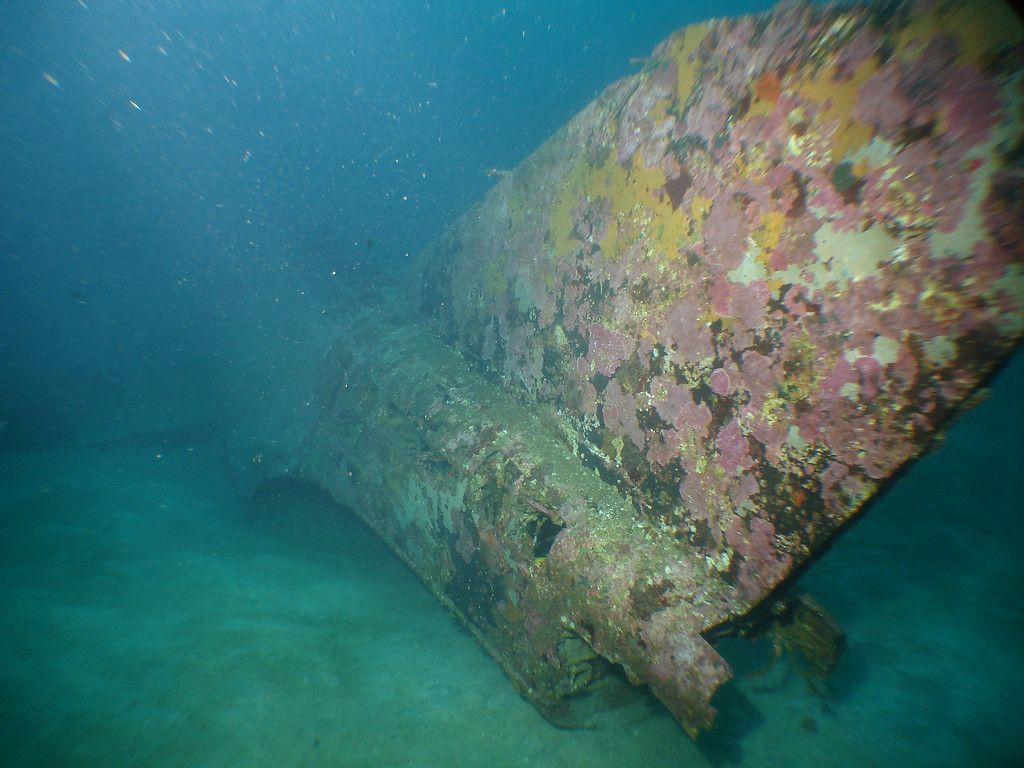 Tail section of B26 Bomber wreck in 45m