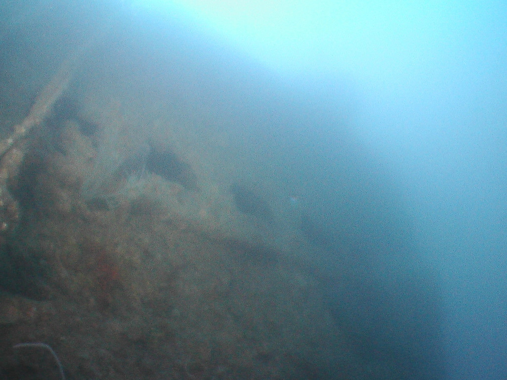 Characteristic vent holes along side of submarine