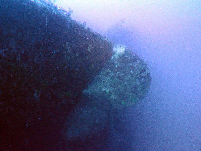 Rudder stopped prop during sinking