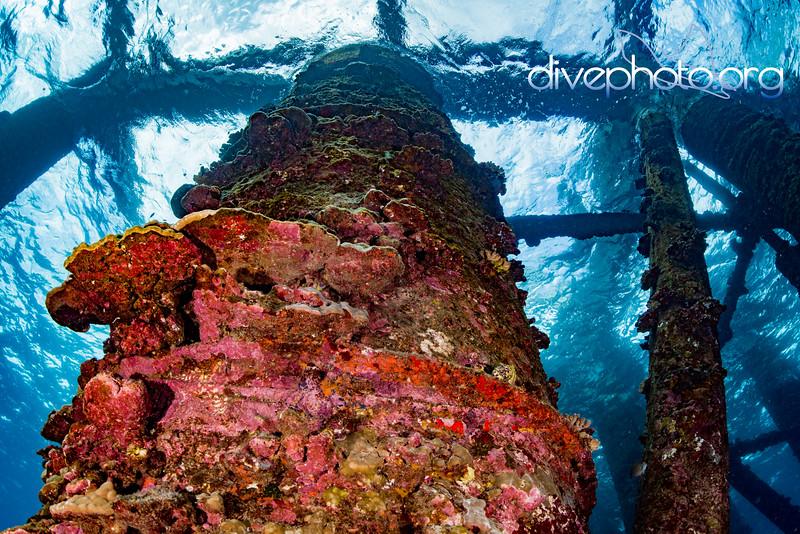 Derelict Whittington Pier, Honuapu, Hawaii