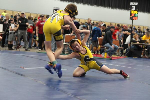 Iowa grade school and junior high state championships