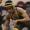 (Saturday February 9th 2014 - Warren Fitzgerald High School - Athletic Gym - Warren, MI) Josh Young of Ferndale High School prepares to grapple an opponent Saturday at the MHSAA wrestling Disctrics at Warren Fitzgerald High School. Photo by: Brian B. Sevald