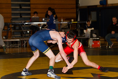 2014 Massapequa Holiday Tournament