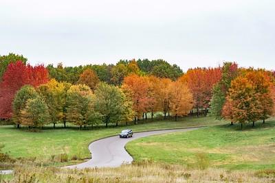 Barn Road Arboretum