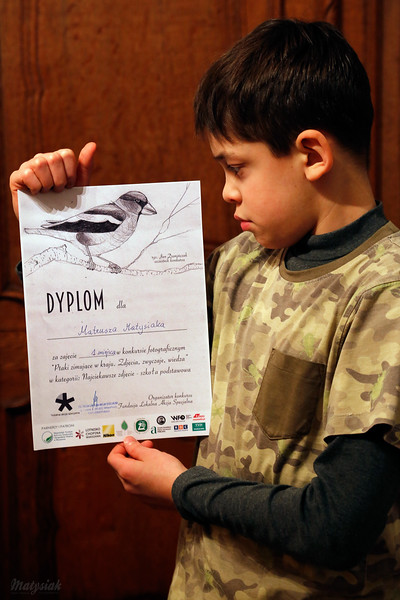 """Dyplom Konkurs """"Ptaki zimujące w kraju. Zdjęcia, zwyczaje, wiedza."""" ©Agata Katafiasz-Matysiak"""