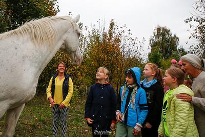 Natural Road Ranch Chojnata ©Agata Katafiasz-Matysiak