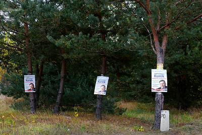 Jesienny las pełen KUREK
