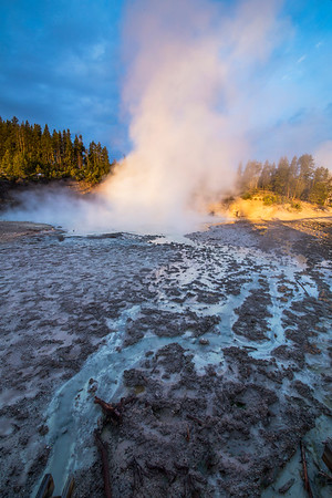 Yellowstone National Park Morning