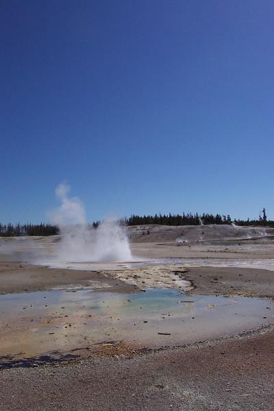 Norris Geyser Basin - 6/26/2002