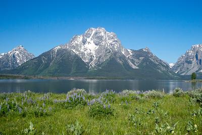 View of Mount Moran from Elk Island.  Cowboy breakfast spot.