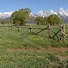 View on Grand Teton from Moulton Barn