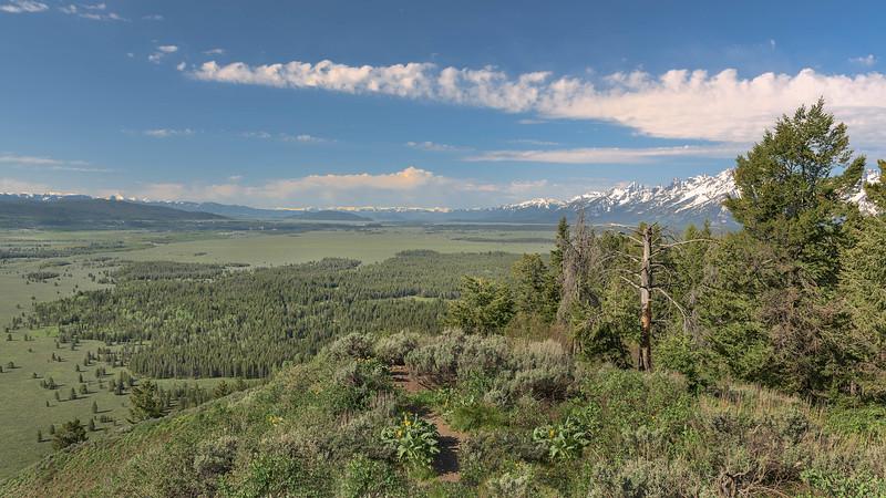 Teton Range from Signal Mountain