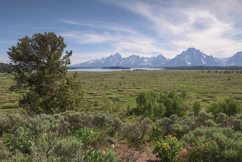 View on Teton Range from Jackson Lake Lodge