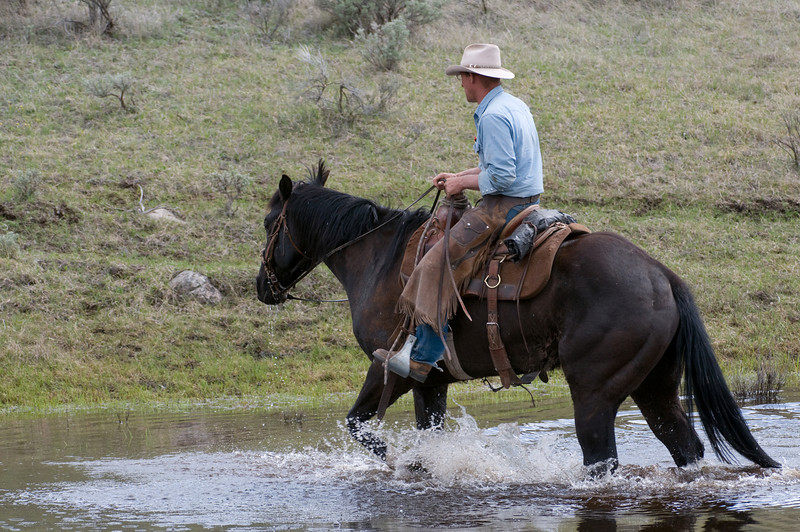 Cowboy on Horse Crossing Stream