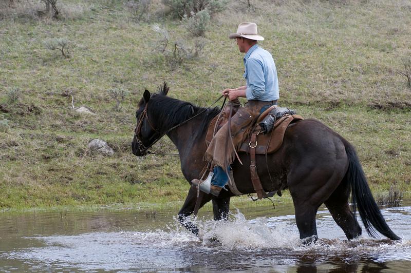 Cowboy on Horse Crossing Stream