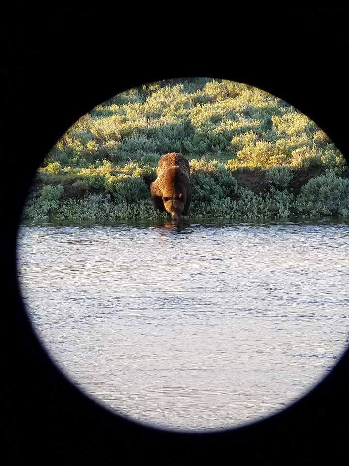 Photo take with my Samsung Galaxy S7 cell phone through my Cabela's Krotos HD Spotting Scope.  Power is 20-60x with 86mm objective diameter.