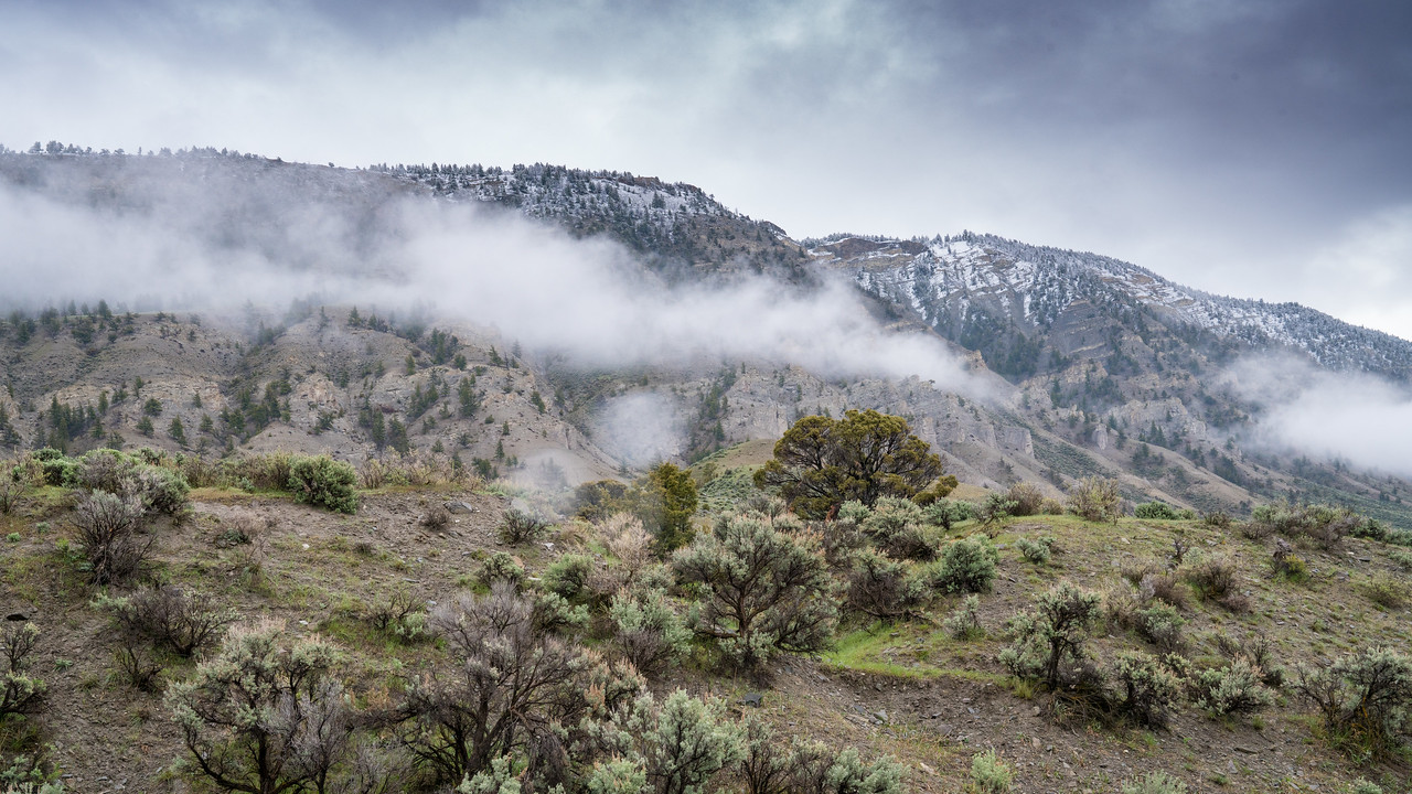 Mt Everts in the Gallatin mtn range.  SE of Mammoth Hot Springs.
