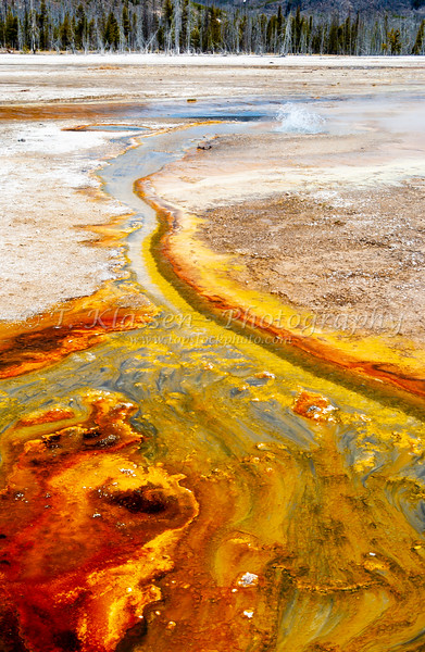Hotsprings and mineral precipitate at Black Sand Basin in Yellowstone National Park, Wyoming, USA.