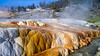 The travertine hills of Mammoth Hotsprings in Yellowstone National Park, Wyoming, USA.