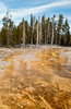 Hotsprings at Black Sand Basin in Yellowstone National Park, Wyoming, USA.