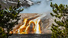 Colorful pools and hotsprings in the Midway Geyser Basin in Yellowstone National Park, Wyoming, USA.