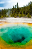 A closeup of the Morning Glory Pool in Yellowstone National Park, Wyoming USA.
