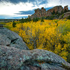 "Fall colors of aspen trees in the Blair-Wallis area of Veduawoo in Albany County, Wyoming. The unique rock formations outside of Laramie provide for a popular rock climbing and hiking destination. <br /> <br /> Photo by Kyle Spradley | © Kyle Spradley Photography |  <a href=""http://www.kspradleyphoto.com"">http://www.kspradleyphoto.com</a>"