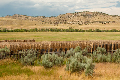 Hay bales on a ranch off of Wyoming SR 290, west of Meeteetse