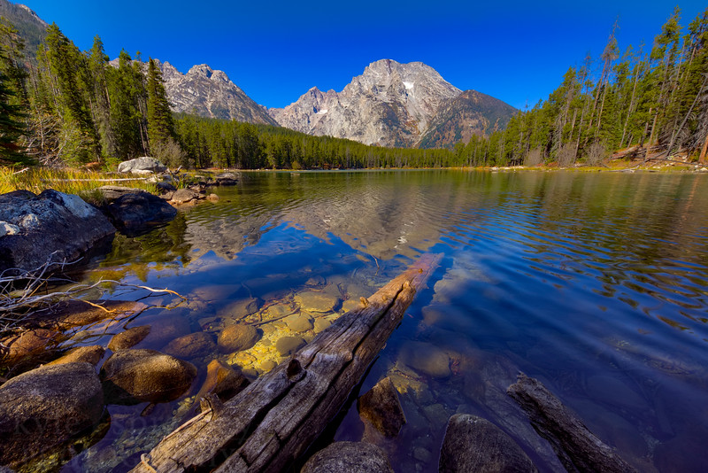 """Leigh Lake during early fall season in Grand Teton National Park. The Teton Range is reflected into the clear, mountain lake on a clear, blue sky and sunny day.<br /> <br /> © Kyle Spradley Photography    <a href=""""http://www.kspradleyphoto.com"""">http://www.kspradleyphoto.com</a>"""