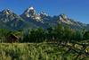 Mornin Grand Tetons