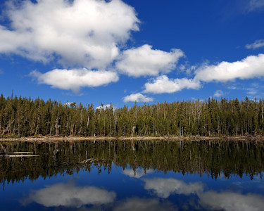 Reflected Clouds and Scaup Lake, Teton County, WY