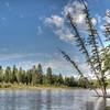 Calm Snake River