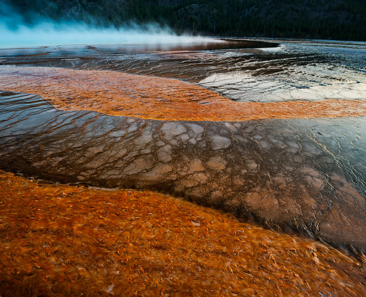 Grand Prismatic Geyser, ribbons of red algae on bacterial mats, Yellowstone National Park, Wyoming at sunset.