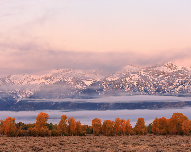 Dawn and Fog, Teton County, WY