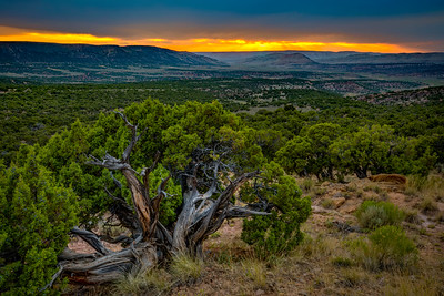 A summer sunset at Flaming Gorge National Recreation Area. The reservoir is the largest in Wyoming as it stores more than 3.7 million acres of water from the Green River as the lake travels from outside of the towns of Rock Springs and Green through the Utah border.   Photo by Kyle Spradley | © Kyle Spradley Photography | www.kspradleyphoto.com