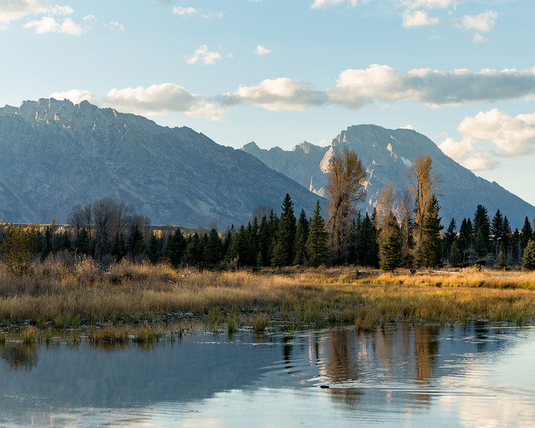 Beaver and Snake River, Grand Teton National Park