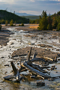 Evening light at the Norris Geyser Basin in Yellowstone National Park.  Photo by Kyle Spradley | www.kspradleyphoto.com