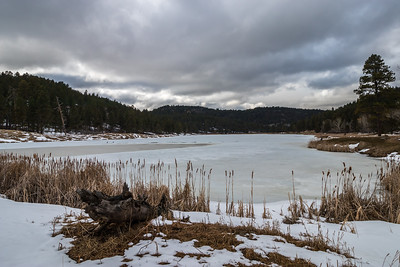 Cook Lake Recreation Area