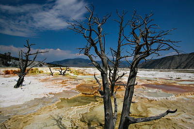 Mammoth Hot Springs in Yellowstone National Park.   Photo by Kyle Spradley | www.kspradleyphoto.com