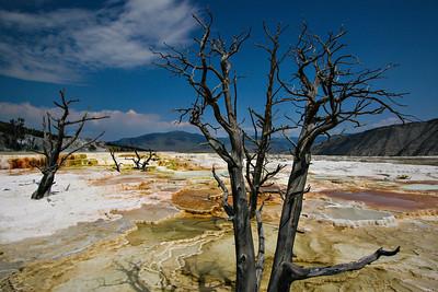 Mammoth Hot Springs in Yellowstone National Park.   Photo by Kyle Spradley | www.kspradleyphoto.com