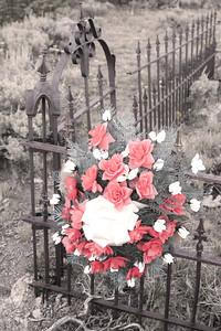 Cemetary at Miners Delight