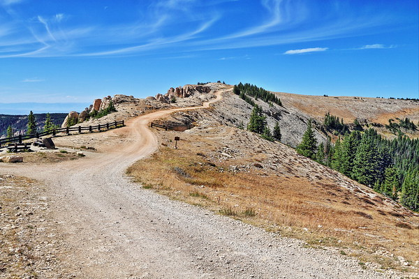 Road to the Medicine Wheel in the Bighorn Mountains of Wyoming