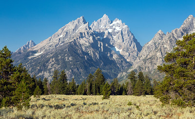 Grand View of Grand Teton