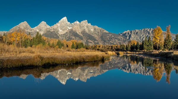 Regal Teton Faces