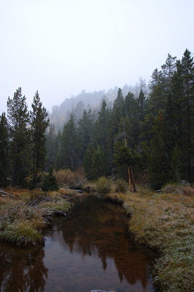 Louis Creek, Shoshone National Forest