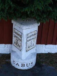 Cabus