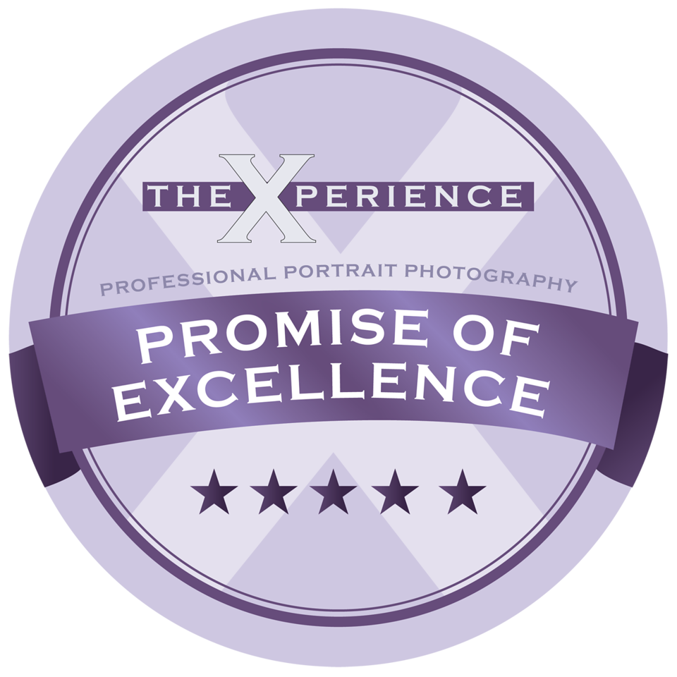 promise of excellence final-01