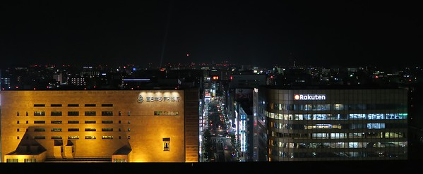 Night view of Fukuoka from the train station roof.