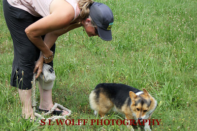 2012-06-10-DR-XC-Dogs-9253