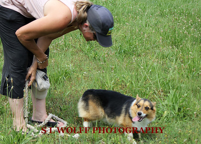 2012-06-10-DR-XC-Dogs-9252